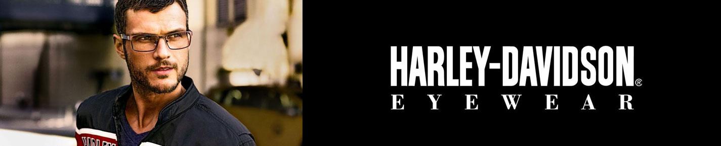 Harley Davidson Glasses banner