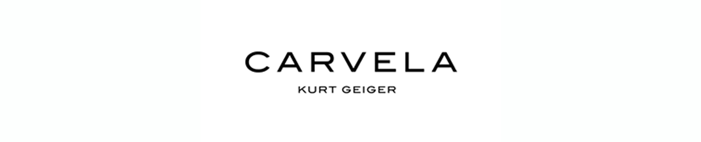 Carvela Glasses banner