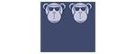 Monkey Monkey KIDS DesGlasses & 太阳镜