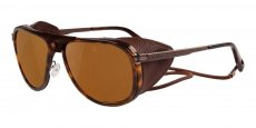 VL131500072622 Shiny Tortoise, (Brown Polar) Polarized