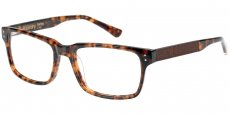102 GLOSS TORT/BROWN