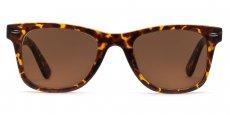 Indium - P2429 - Havana (Sunglasses)