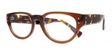 Brown and Tortoise