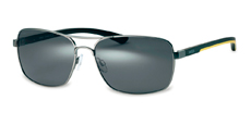 301 gunmetal (grey polarized)