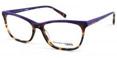 C1 Purple Top/Havana Bottom