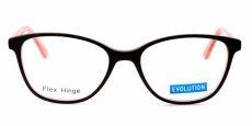 Evolution - EV1101