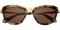10018 Demi Tortoiseshell