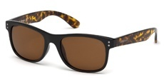 01H shiny black / brown polarized