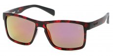 54D red havana / smoke polarized