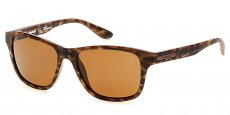 49H matte dark brown / brown polarized