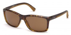 52H dark havana / brown polarized