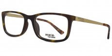 TOR Tortoiseshell with gold temples and matt demi eartips