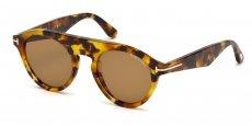 55E coloured havana / brown