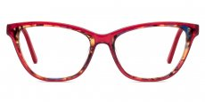 C3 Red and Blue Tortoise