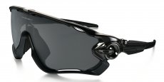 929007 POLISHED BLACK/black iridium polarized