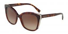 80023B HAVANA/brown gradient
