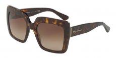 Dolce & Gabbana - DG4310