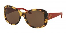 500473 SHINY SPOTTY TORTOISE/brown